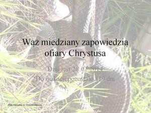 Wąż miedziany